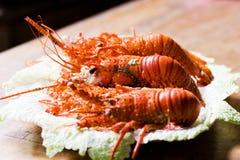 омары стоковое фото rf
