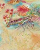 омар водорослей Стоковые Изображения RF