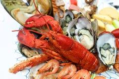 Омар морепродуктов на таблице Стоковое Изображение