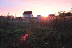 ломать рассвет Стоковое Фото