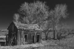 домашнее деревенское Стоковое Изображение RF