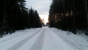 домашний длинний путь Стоковое Фото