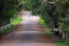 домашний длинный путь Стоковое Изображение