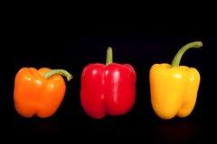 3 домашних перца на чисто черной предпосылке Домашний перец кухни Стоковое фото RF