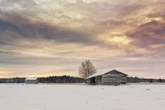 2 дома амбара на полях зимы Стоковая Фотография RF