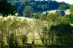2 дома в красивой зеленой окружающей среде Стоковое Изображение