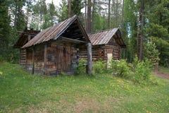 2 дома и собака в древесинах Стоковая Фотография