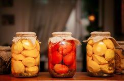 домодельные томаты Стоковые Изображения RF