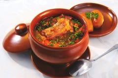 домодельный суп Стоковая Фотография