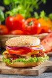 2 домодельных бургера сделанного от свежих овощей Стоковое фото RF