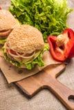 2 домодельных вегетарианских бургера с свежими органическими овощами дальше Стоковое Фото