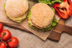 2 домодельных вегетарианских бургера с свежими органическими овощами дальше Стоковая Фотография RF