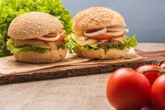 2 домодельных вегетарианских бургера Стоковые Фотографии RF