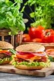2 домодельных гамбургера сделанного от свежих овощей Стоковое Фото