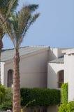 дом около пальмы Стоковая Фотография RF