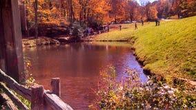 Оно все в юго-западной Вирджинии как не другое в мире Стоковое фото RF
