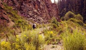 Оно в горах транс--Ili Alatau Стоковое Изображение RF