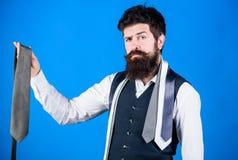 Оно смотрит superbly стильный Бородатый человек держа стильный галстук Зверский парень в стильных одеждах выбирая первоклассный а стоковые фотографии rf