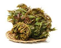 Оно ` s куча китайца Мультяшки пускает ростии Оно может сделать разнообразие блюда, не только богатые в питании, и имеет высокое  стоковые изображения rf