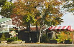ОНТАРИО - КАНАДА, 10-ОЕ ОКТЯБРЯ 2017: Ферма болота клюквы ` s Johnston, Канада Стоковое Фото