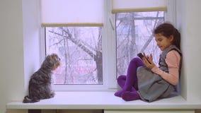 Онлайн-игра сети девушки предназначенная для подростков играя для smartphone и собаки сидя на любимчике windowsill силла окна Стоковая Фотография