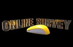 Онлайн обзор Стоковое Фото