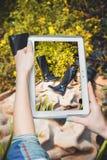 Онлайн покупая ботинки, продажа ботинок женщин Стоковое Изображение