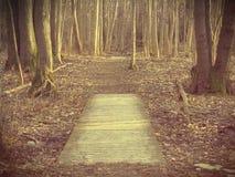 Он дал мне пути на земле, I've пойти, как я может шагнуть в сторону? Стоковая Фотография RF
