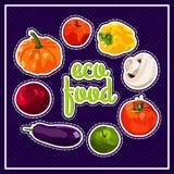 Он стильный плакат с комплектом овощей вектора Еда Eco Еда сбора осени здоровая Свежая и здоровая еда Стоковая Фотография RF