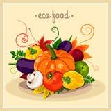 Он стильный плакат с комплектом овощей вектора Еда Eco Еда сбора осени здоровая Свежая и здоровая еда Стоковая Фотография