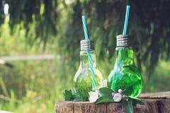 Опарникы с соломой на пеньке под деревом, внутри холодного carbonated лимонада стоковые фотографии rf