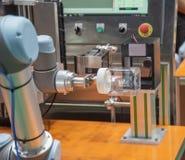 Опарник еды робота поднимаясь, который нужно просмотреть стоковые изображения