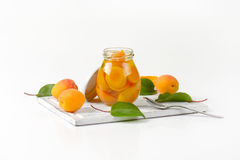 Опарник компота абрикоса Стоковое Фото