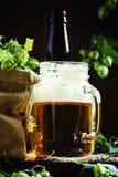 Опарник пива и свежих хмелей на темной деревянной предпосылке, selectiv стоковые изображения