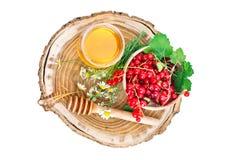 Опарник свежего меда, стоцвета и красных смородин на белой предпосылке Стоковое Изображение