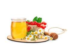 Опарник свежего меда, стоцвета и красных смородин на белой предпосылке Стоковые Изображения RF