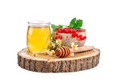 Опарник свежего меда, стоцвета и красных смородин на белой предпосылке Стоковая Фотография