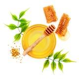 Опарник свежих меда, сота и цветня на белой предпосылке Стоковые Фотографии RF