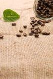 опарник стекла кофе мешковины фасолей коричневый Стоковое Изображение RF