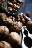 Опарник шутихи грецкого ореха грецких орехов Стоковые Фото