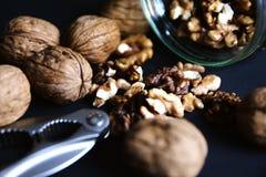 Опарник шутихи грецкого ореха грецких орехов Стоковое Изображение