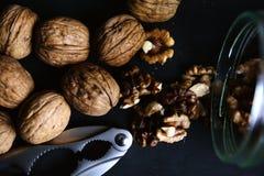 Опарник шутихи грецкого ореха грецких орехов Стоковая Фотография