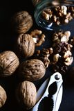 Опарник шутихи грецкого ореха грецких орехов Стоковое Фото