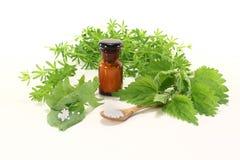 опарник homeopathy apothecary стоковые изображения