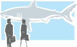 Опасная встреча акулы Стоковые Фото