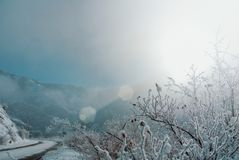 Опасная дорога серпентина зимы при покрытые знаки внимания Стоковая Фотография RF