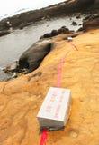 Опасная зона утеса головы ферзя в Yehliu Geopark Стоковое Изображение RF
