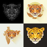 Опасное млекопитающееся животное Тигры вектора установленные в полигональном стиле Захватническое животное Стоковые Изображения RF