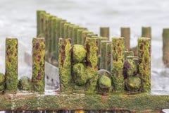 Опасность для окружающей среды Ржавые столбы groyne пляжа металла покрытые внутри Стоковая Фотография
