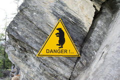 Опасность медведя Стоковые Изображения